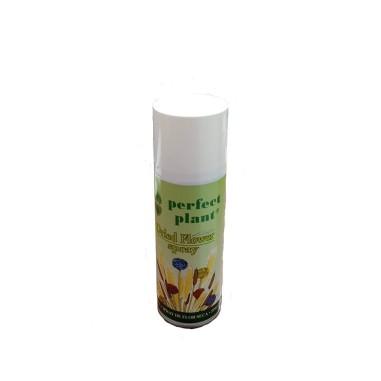 Abrillantador flor seca