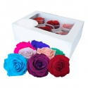ROSA PRESERVADA BOTON 6 UNDS./PACK